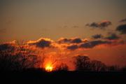 1st Feb 2013 - Burning Bush Sunrise