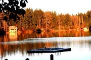 3rd Feb 2013 - Hicks Lake at dusk