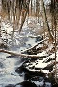4th Feb 2013 - Zee Snowy Falls
