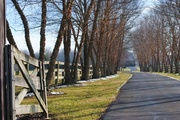 7th Feb 2013 - Winding Lane on a Winter's Day
