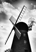 11th Feb 2013 - Clouds, sails and a bird