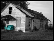 4th Aug 2010 - Summer Memory #61: The beautiful remains so in ugly surroundings-Chazal