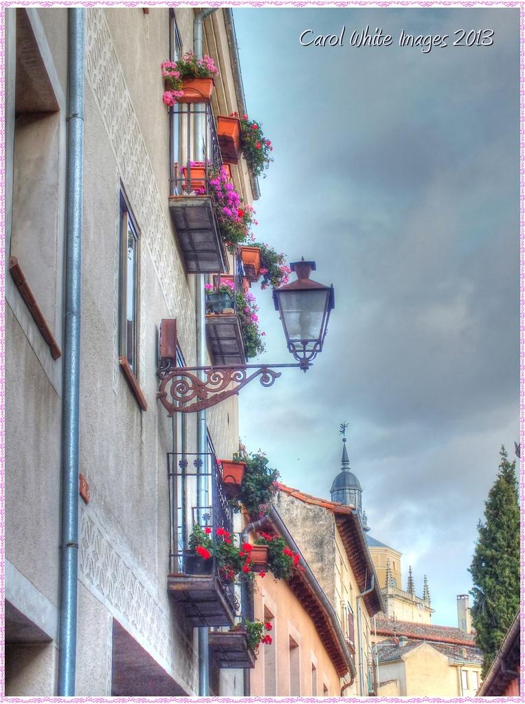 Balconies And Flowers by carolmw