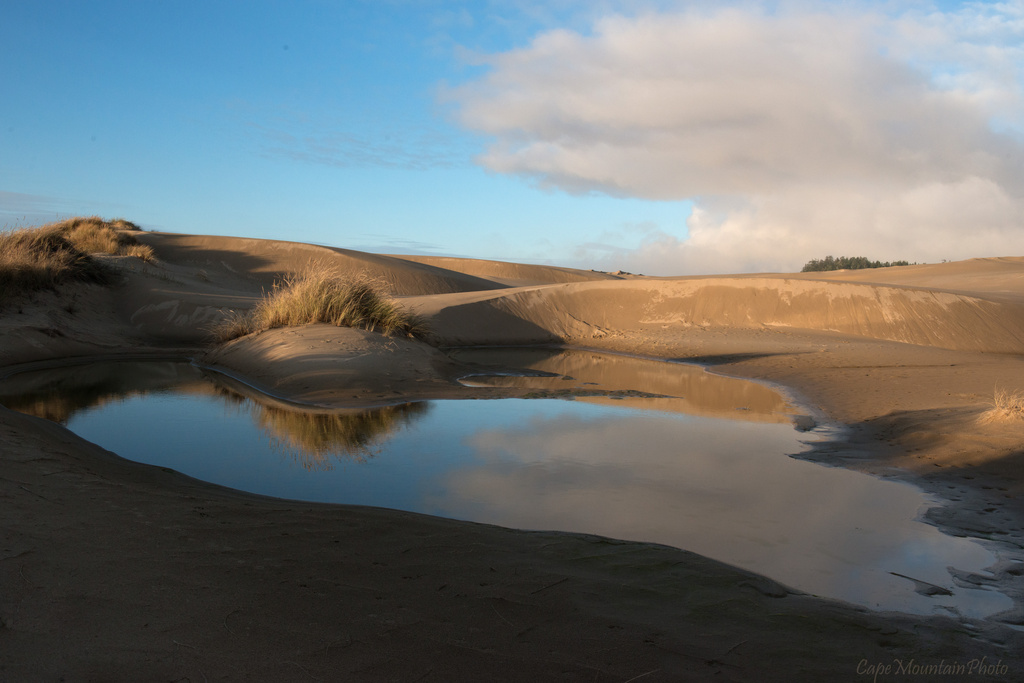Dune Reflections by jgpittenger