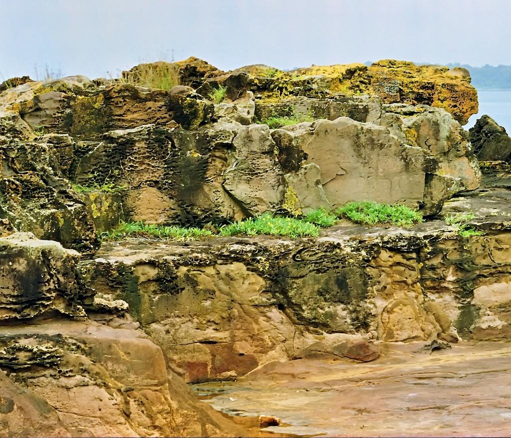 Rocks and grasses by peterdegraaff