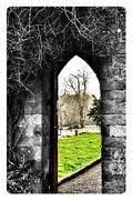 18th Feb 2013 - Through the magic door