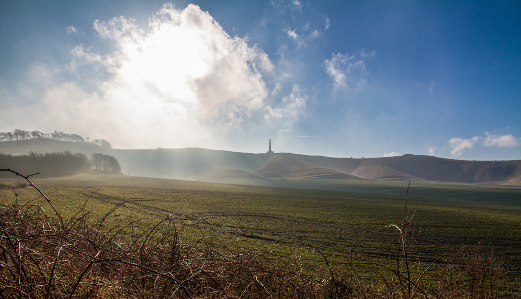 Day 49 - Mist over Cherhill Down by snaggy