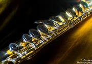 21st Feb 2013 - Day 52 - Flute