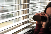 22nd Feb 2013 - I Spy Something Cardboard
