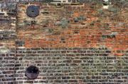 24th Feb 2013 - Wall