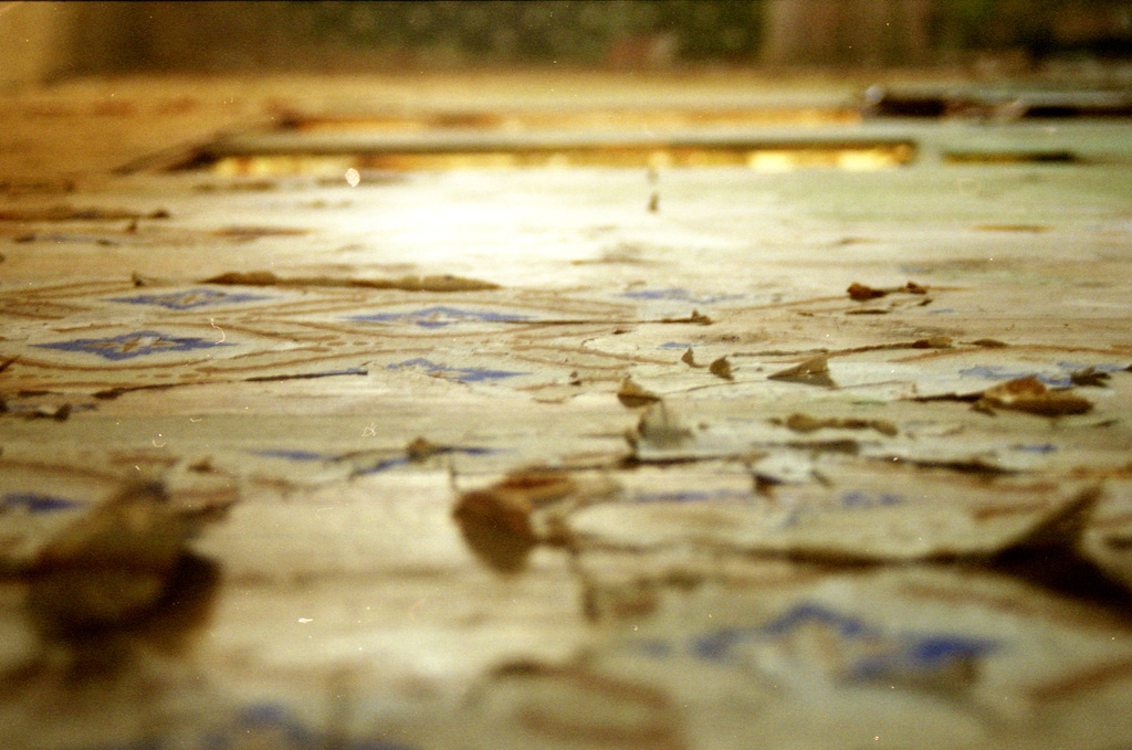 Neg 8 peeling wallpaper  by ingrid2101