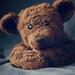 Teddy by kwind