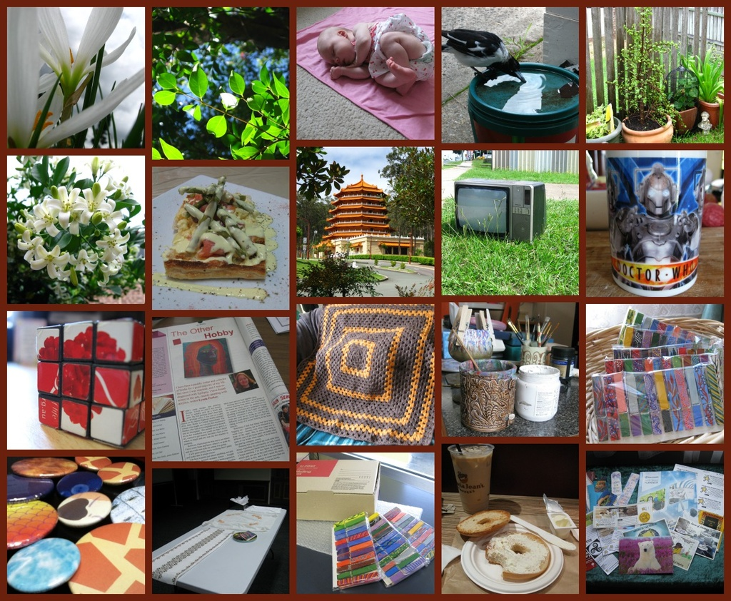 February's Activities by mozette