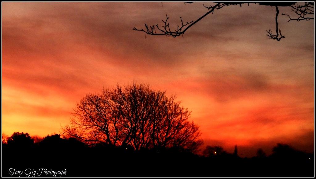 Sky by tonygig