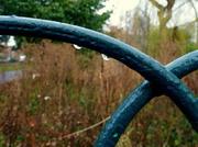 1st Mar 2013 - Drops