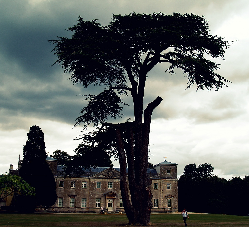 Lydiard Park by rich57