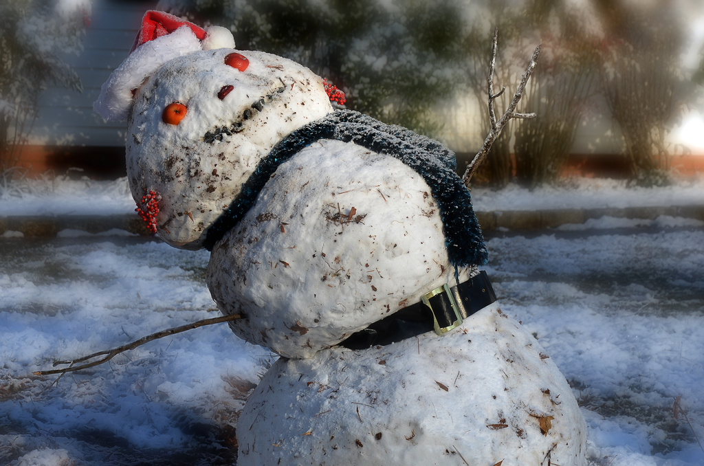 What shall we do with the drunken snowman? by wendyhgill