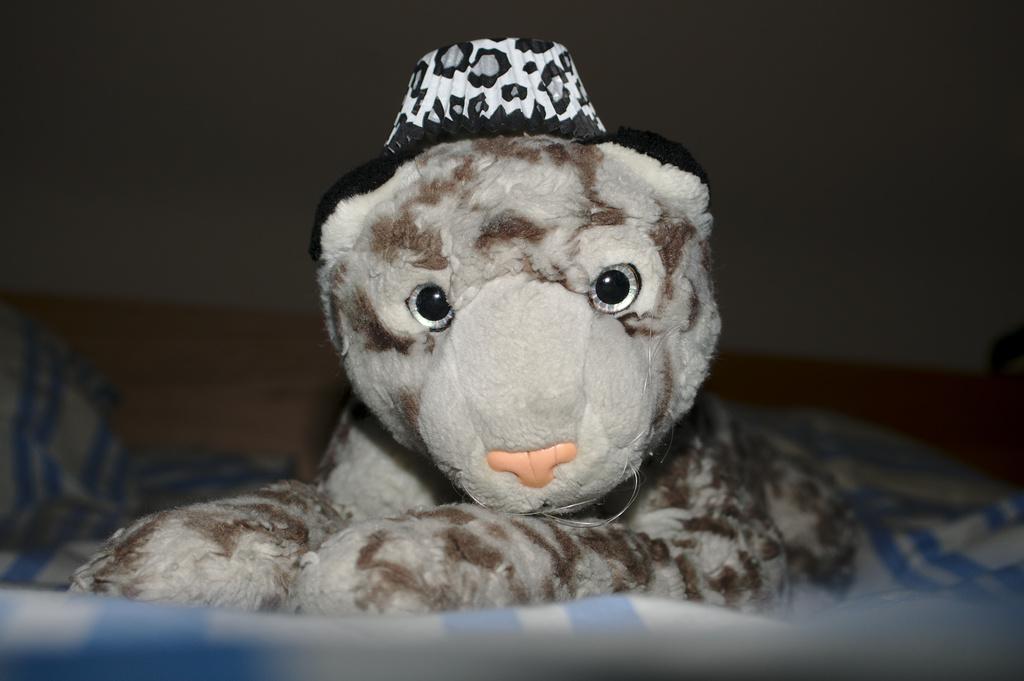Deedle hat by darkhorse
