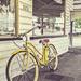 the yellow bike by corymbia