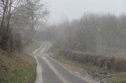 11th Mar 2013 - Snowstorm