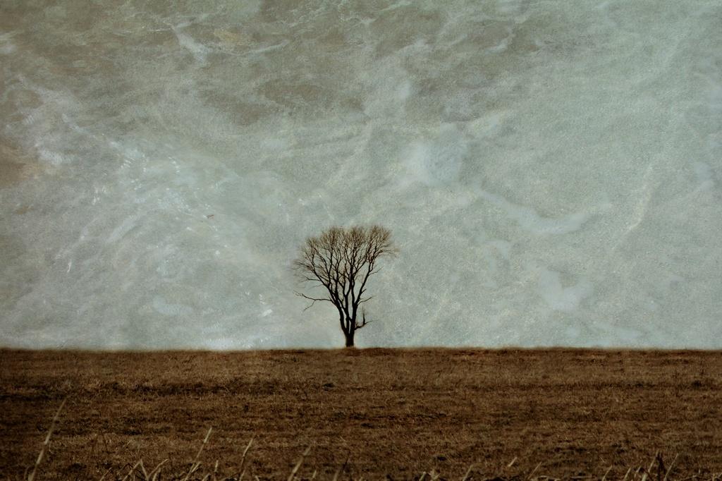 Alone by digitalrn