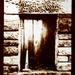van dyke window by ingrid2101