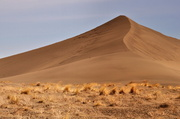 24th Mar 2013 - The Dune