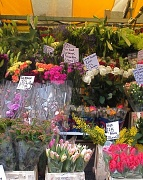 20th Jan 2010 - Flower Stall