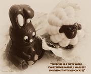 26th Mar 2013 - Sweet like chocolate.