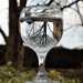 The world in a glass of water by richardcreese