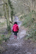 31st Mar 2013 - Mud! Mud! Glorious Mud!