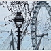 London Eye by judithdeacon