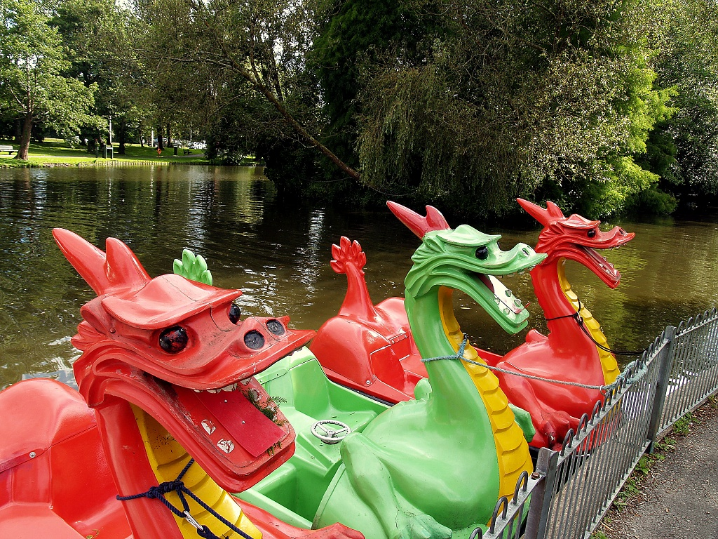 Welsh Dragons by rich57