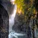 Capilano River Regional Park by abirkill