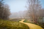 18th Apr 2013 - Where does this path lead, it's a bit foggy