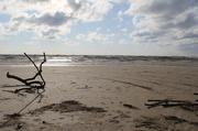 21st Apr 2013 - On the Beach