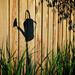 Garden shadows by kwind