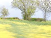 11th May 2013 - Driving along...