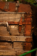 11th May 2013 - Old Rusty Trunk
