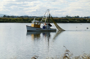 14th May 2013 - Prawn Trawler