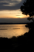 17th May 2013 - Silhouette Sunset