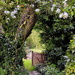 Up the garden path.......