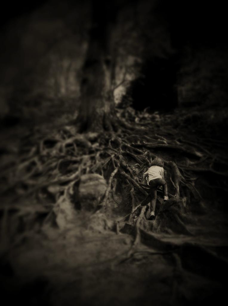 sophia and the big tree by ingrid2101