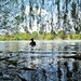 on Heath Pond at Petersfield by quietpurplehaze