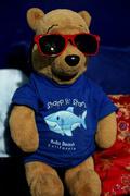 8th May 2013 - Pooh Bear