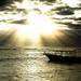 Sunburst Glory by pdulis