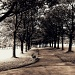 Woodhouse Moor by rich57