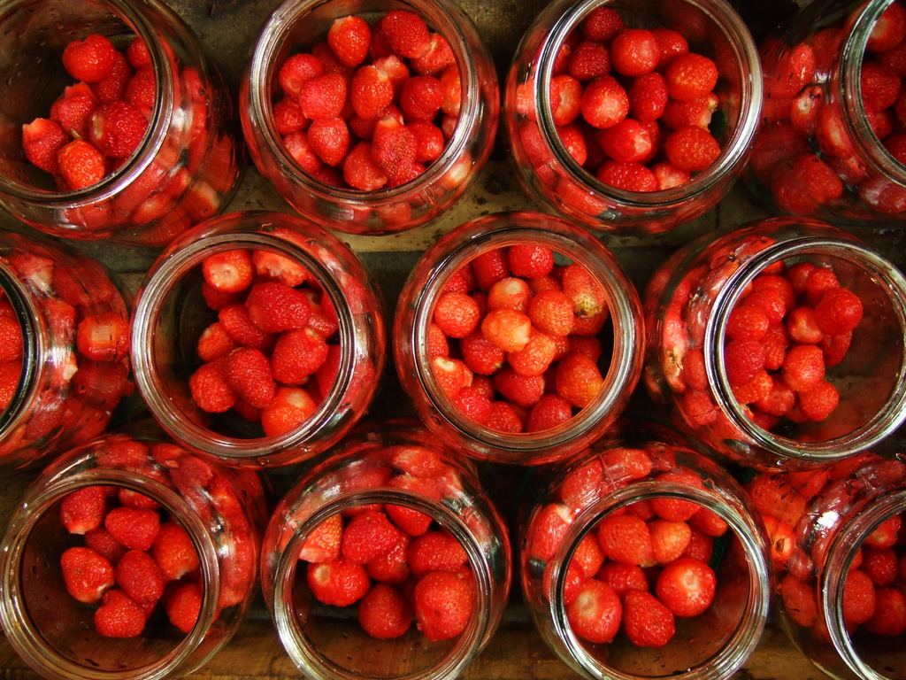 'Tis the season of strawberries by didi