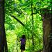 Take a Hike by alophoto