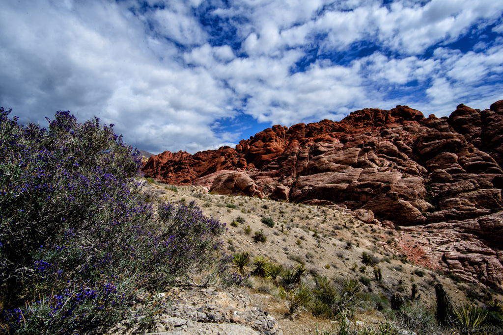 Red Rock 1 by jgpittenger